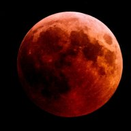 -Neonblack-